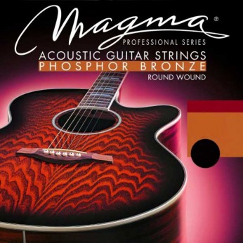 Stygos akustinei gitarai dvylikastygei Magma12 10-48 Medina Artigas