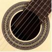Klasikinė gitara Classical HGL6 Green line Hofner